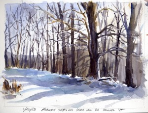Morning Trees On Cedar Hill Road, Pownal, Vermont - watercolor plein air sketch by Tony Conner