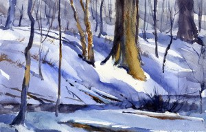 Shade and Shadow, Ball Mountain Road - watercolor plein air landscape by Tony Conner