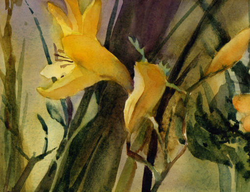 Front Garden Lily - limited edition print of original watercolor painting by Tony Conner