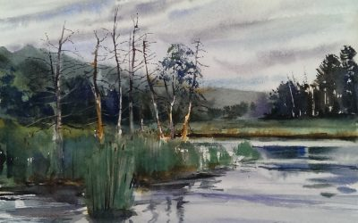 Underhill Swamp – watercolor en plein air landscape on an overcast day