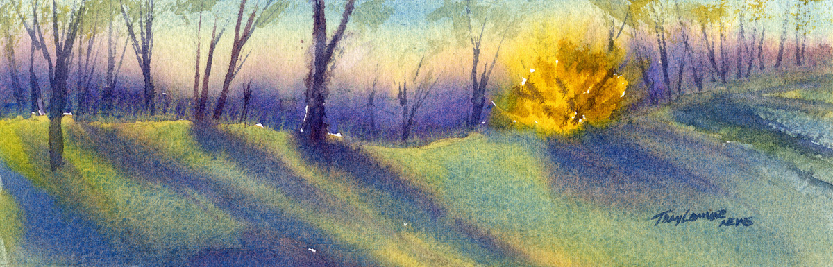 Forsythia -watercolor painting of the harbinger of spring by Tony Conner