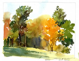 Plein Air sketch - Hillside tree line