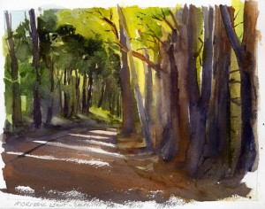 Morning Light on Carpenter Hill Road - watercolor plein air painting by Tony Conner