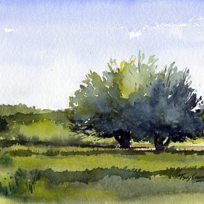 """FruitTrees, EarlySpring"" - original plein air watercolor landscape painting by Tony Conner"