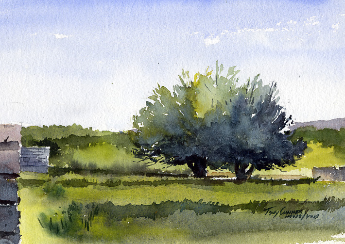 """Fruit Trees, Early Spring"" – Watercolor Landscape Painting"