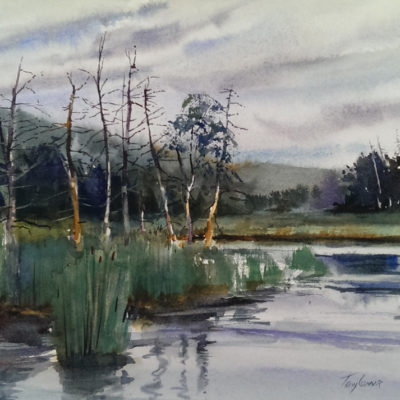 Underhill Swamp - en plein air watercolor landscape painting by Tony Conner