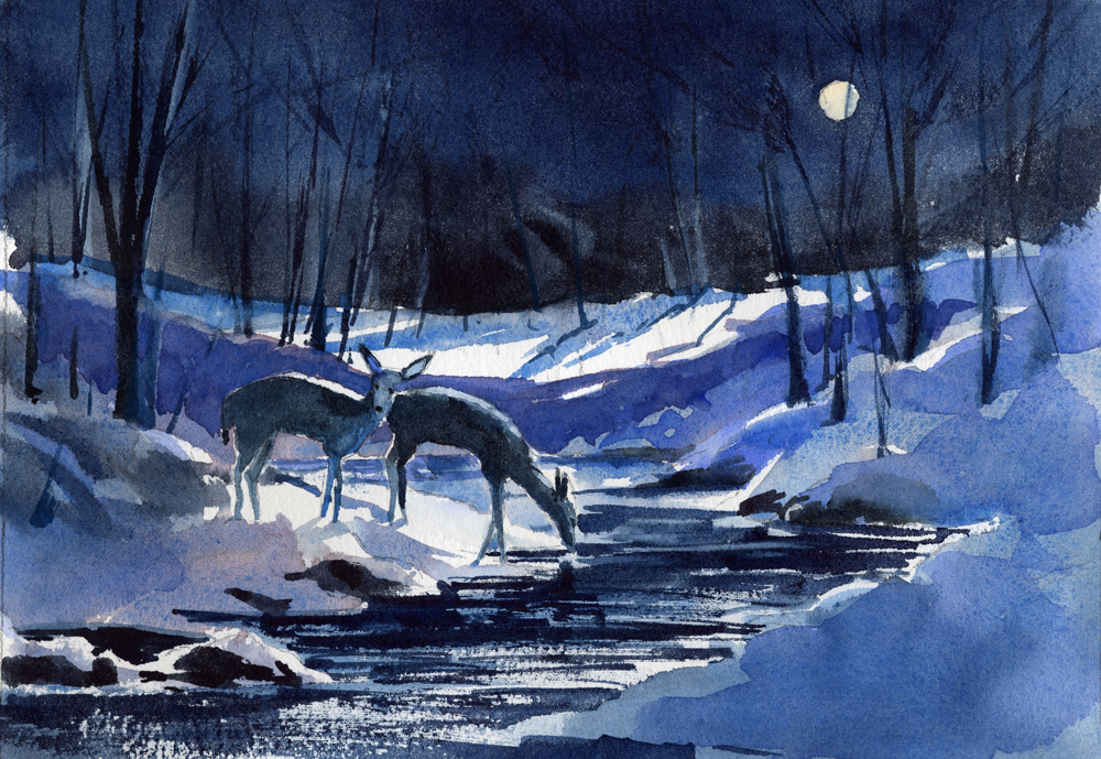 Winter holiday greeting cards mixed pack vermont watercolor winter holiday greeting cards m4hsunfo
