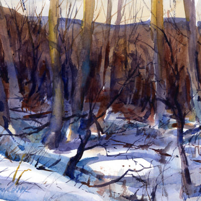 Gulley In The Woods - en plein air watercolor landscape painting of winter by Tony Conner