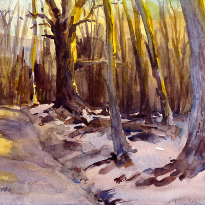 Late In The Day - en plein air watercolor winter landscape painting by Tony Conner
