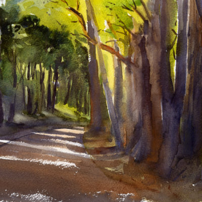 Morning Light on Carpenter Hill Road - watercolor painting of trees and a country road in sunlight by Tony Conner